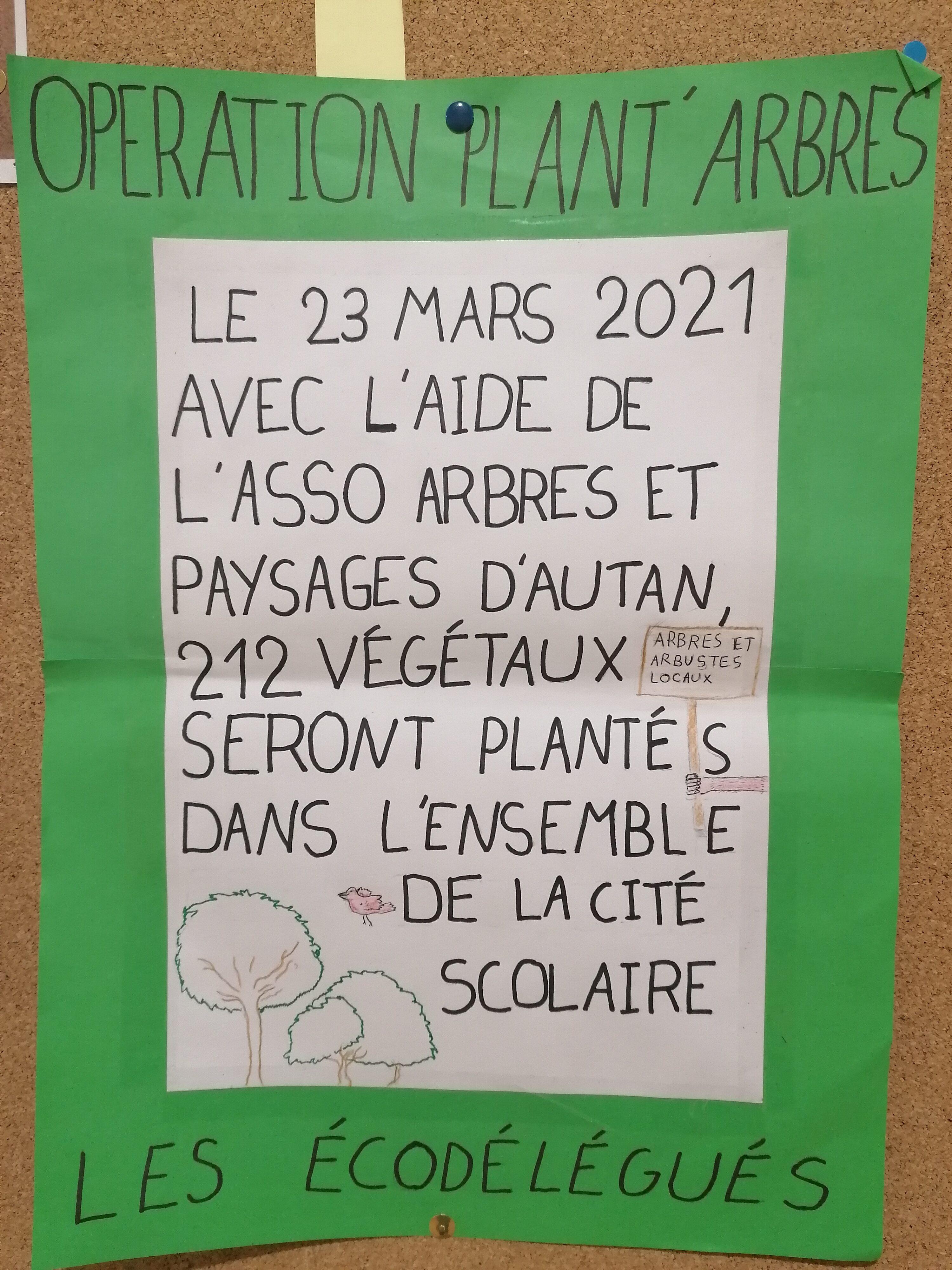 Affiche Plant'arbres.jpg